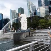 Du lịch, hàng không châu Á không thể sớm phục hồi