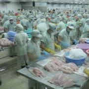 Trung Quốc tiếp tục 'gây khó khăn' cho thủy sản xuất khẩu Việt Nam