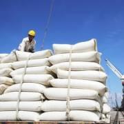 Gạo nhập Ấn Độ tăng đột biến, hoả tốc lập đoàn kiểm tra 5 doanh nghiệp