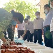 Trung Quốc vẫn là thị trường xuất khẩu rau quả lớn nhất của Việt Nam