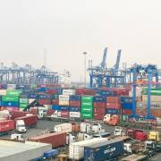 Cảng Cát Lái có nguy cơ gián đoạn hoạt động