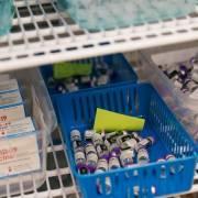 WHO kêu gọi nước giàu ngưng tiêm mũi 3, dành vắc xin cho nước nghèo