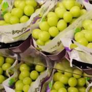 Nhật Bản đau đầu vì nạn 'trái cây giả' từ trang trại Trung Quốc và Hàn Quốc