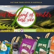 Tặng gạo ST 25 cho người dân Úc dùng thử