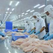Doanh nghiệp thủy sản phản ứng khi bị xếp vào nhóm nguy cơ ô nhiễm cao