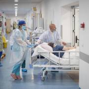 Bệnh Covid-19 nhẹ vẫn có thể tử vong vì chứng huyết khối tĩnh mạch