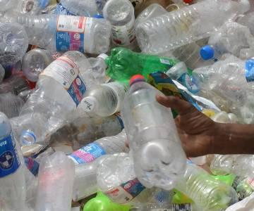 Thay thế chai nhựa, còn chặng đường dài