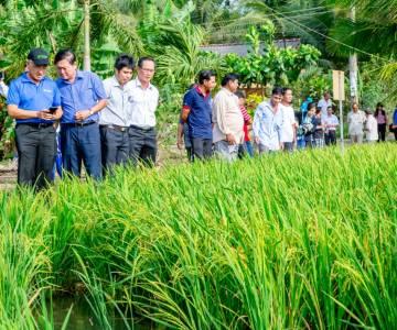 GS.TS Võ Tòng Xuân: Nông nghiệp tuần hoàn cần lớp nông dân đổi mới