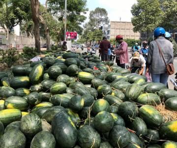 Bộ Công Thương yêu cầu các địa phương rà soát nông sản xuất sang Trung Quốc