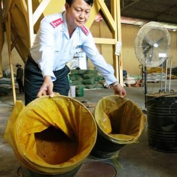 Vàng ô vào danh mục chất cấm trong chăn nuôi