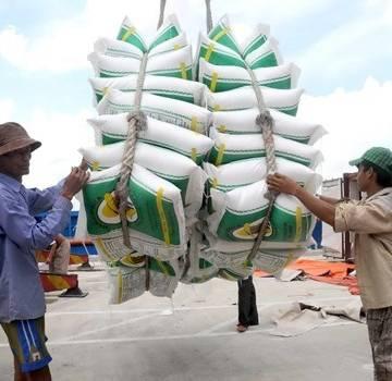 Lộc Trời thúc đẩy chuỗi giá trị lúa gạo
