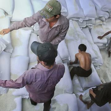 Nông sản Việt Nam bị thập diện mai phục