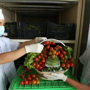 Việt Nam xử lý các sản phẩm rau quả chưa đạt