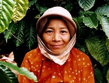 Đồ họa: Cà phê Việt Nam và tầm quan trọng của một chai nước suối