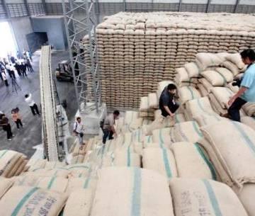 Cảnh báo DN xuất khẩu gạo sang Mỹ kiểm soát dư lượng thuốc BVTV