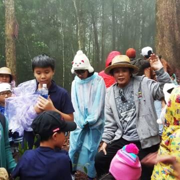 Nhạc sĩ Văn Tuấn Anh: Giữ rừng để có chỗ thở