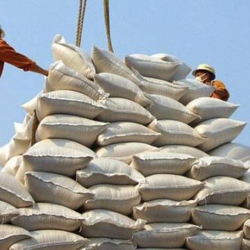 Philippines dừng điều tra sơ bộ về các biện pháp tự vệ với gạo nhập khẩu