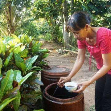 Vũ Thế Thành: Mùi nước mắm