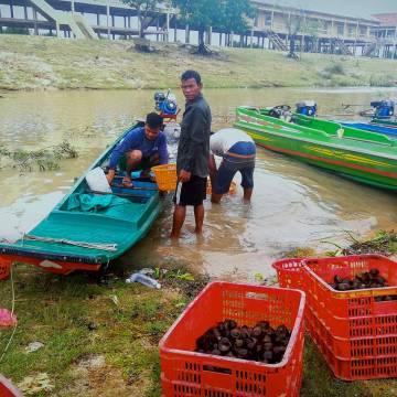 Mekong Connect 2019: Khi mùa nước nổi chỉ còn trong ký ức