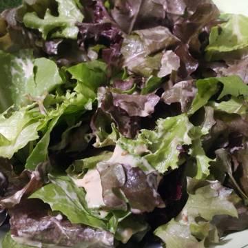Mơ ngày nào cũng là ngày salad