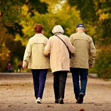 Gần công viên, bạn sẽ sống lâu hơn