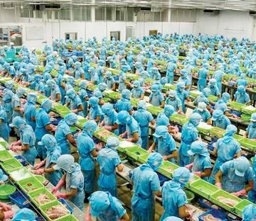 Ả Rập Saudi mở lại cửa cho 12 DN xuất khẩu thủy sản Việt Nam