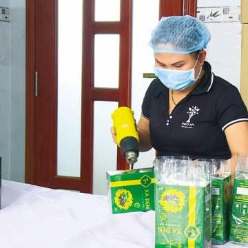 8x khởi nghiệp từ dược liệu Thiên Cấm Sơn