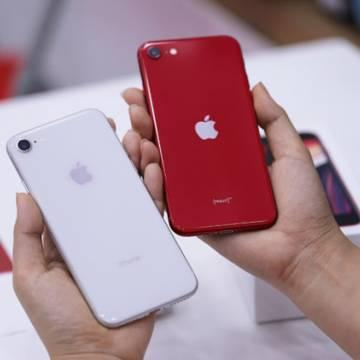 iPhone SE 2020 về Việt Nam với giá 12,7 triệu đồng