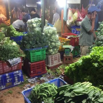 Nhiều loại rau củ quả tăng giá gần gấp đôi