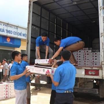 Sơn La xuất thành công 10 tấn thanh long ruột đỏ sang thị trường Nga
