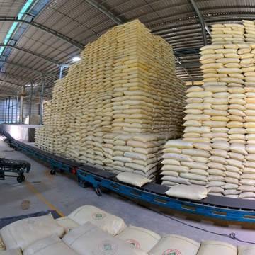 Giá gạo Việt xuất khẩu đang tốt nhất trong lịch sử