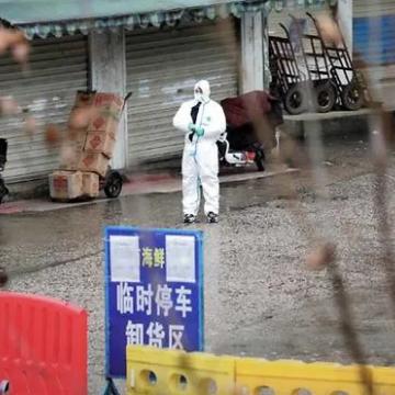 WHO quay lại Trung Quốc khởi động điều tra quốc tế về Covid-19