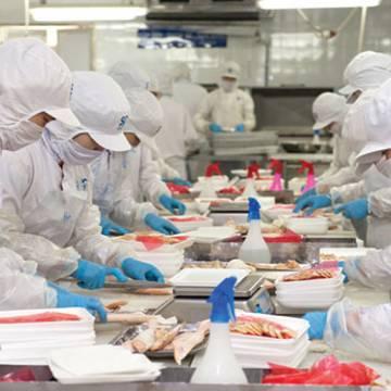 Xuất khẩu thuỷ sản tháng 4 dự báo tăng 10%