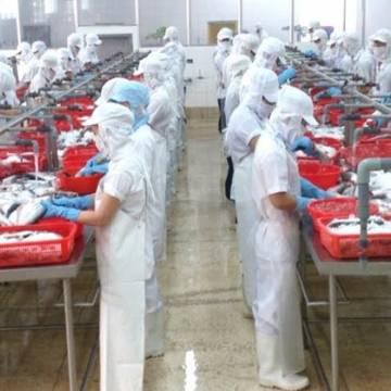 Việt Nam kháng kiện thành công 65 vụ việc