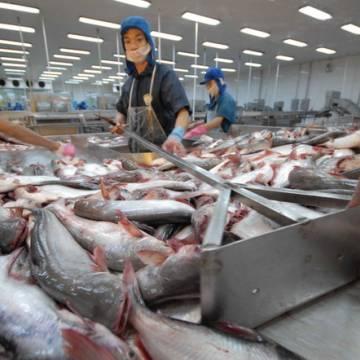 Trung Quốc lại siết thủy sản, trái cây nhập khẩu từ Việt Nam