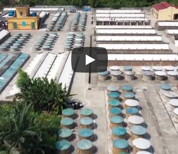 Giọt nước mắm Việt dọc chiều dài đất nước