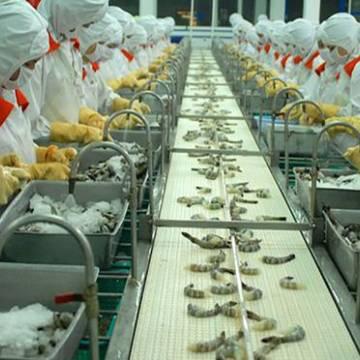 Số lô hàng thủy sản xuất khẩu bị Trung Quốc trả về 'tăng đột biến'