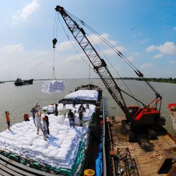 Giá lương thực toàn cầu tăng, gạo Việt hưởng lợi