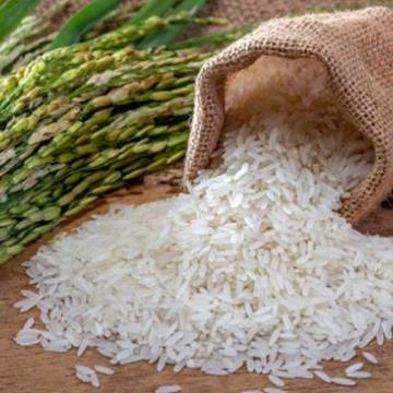 Việt Nam đang mua rất nhiều gạo cao cấp của Ấn Độ