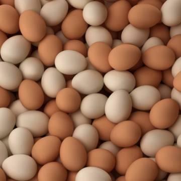 Trứng gà được tiêu thụ mạnh trong dịch Covid-19