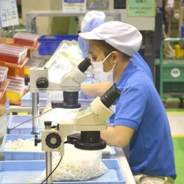 Nhiều doanh nghiệp sẵn sàng bỏ tiền mua vắc xin Covid-19 cho công nhân