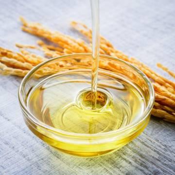 Cỏ May tiến vào thị trường dầu gạo tiềm năng