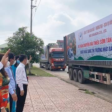 Bộ NN-PTNT đề nghị cấp 'hộ chiếu vắc xin' cho lái xe chở nông sản xuất khẩu