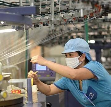 Biến thể của virus, biến thể nền kinh tế