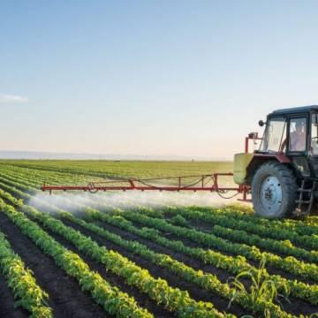Úc cần gấp lao động nông nghiệp từ Việt Nam với mức lương tối thiếu 21 AUD/giờ