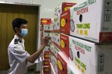 Nông sản xuất khẩu sẽ tăng mạnh nhờ tiếp cận thị trường 2,2 tỷ người