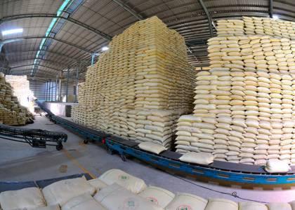 Giá gạo Việt Nam lên mức cao nhất trong vòng 1 năm